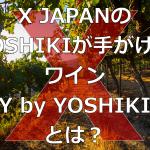 【X JAPAN】YOSHIKIが手がけたワインとは?(Y by YOSHIKI)